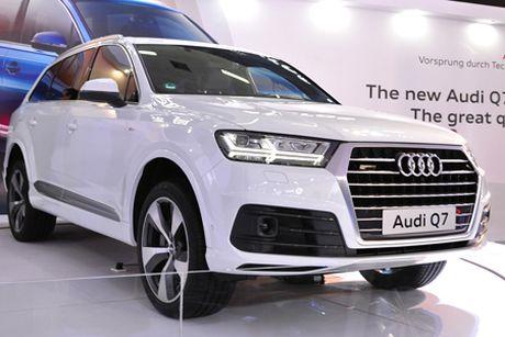 Xe 3 ty Audi Q7 tai Viet Nam 'dinh an' trieu hoi - Anh 1
