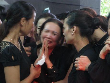Thanh Hoa: Nghen ngao don phi cong Nguyen Van Tung tro ve nha - Anh 4