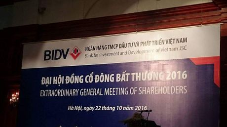 Du kien thay Nguoi dai dien phap luat la Tong Giam doc - Anh 1