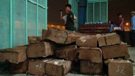 TP.HCM: Lai bat giu nhieu nga voi nhap tu chau Phi ve Viet Nam - Anh 1