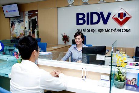 Den het quy III nam 2016, BIDV dam bao muc tang truong on dinh - Anh 1