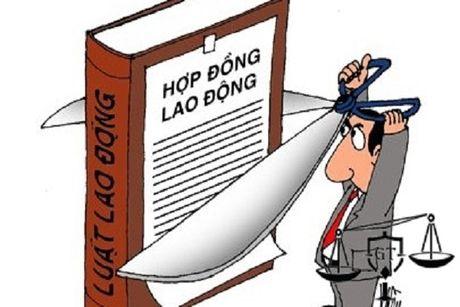 Co duoc cham dut HDLD voi lao dong nu vua nghi thai san - Anh 1