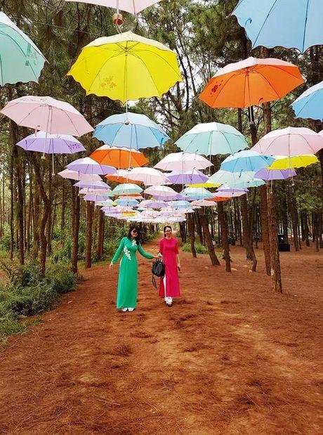 Dam chim khong gian nghe thuat tai Flamingo Dai Lai Resort - Anh 8