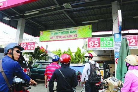 "So Cong thuong TP.HCM kien nghi ""cuu"" xang E5 - Anh 1"