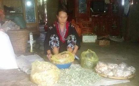 'Vua chua vo sinh' - luong y Trieu Thi Senh - Anh 1