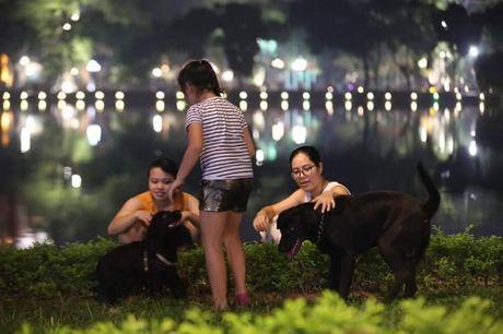 Cam cho khong ro mom vao pho di bo o Ha Noi - Anh 3
