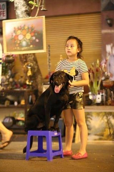 Cam cho khong ro mom vao pho di bo o Ha Noi - Anh 4