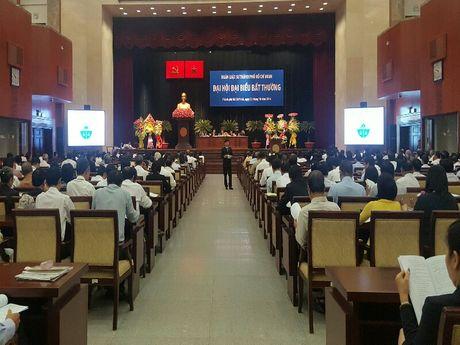 Dai hoi dai bieu bat thuong Doan Luat su TP.HCM - Anh 1