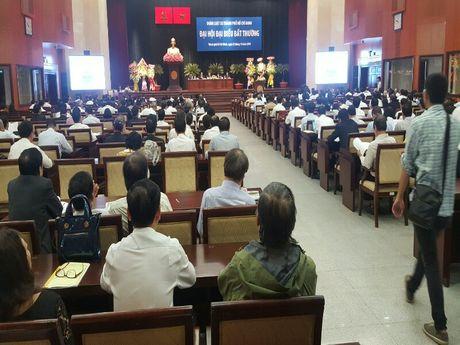 Dai hoi dai bieu bat thuong Doan Luat su TP.HCM - Anh 2