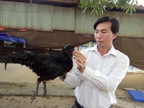 'Nong dan Viet Nam xuat sac' thu nhap it nhat 1 ty dong moi nam - Anh 1