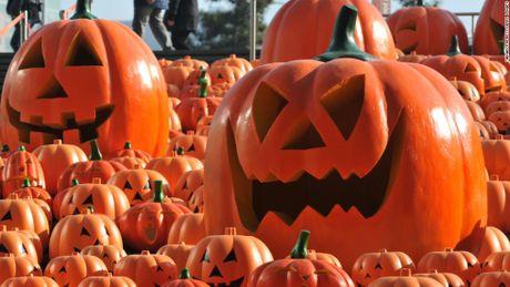 Nhung con so an tuong ve le hoi Halloween - Anh 8