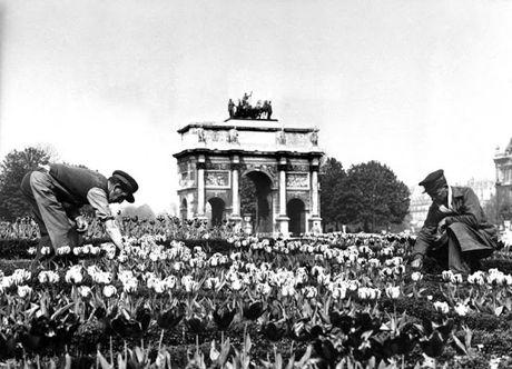 Cuoc song thuong nhat o thu do Paris hoi nhung nam 1920 - Anh 11