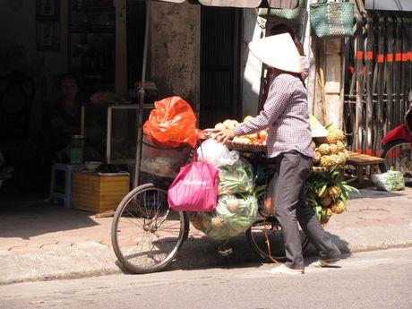 Ha Noi va nhung ganh hang rong tren pho - Anh 10