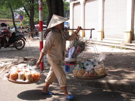 Ha Noi va nhung ganh hang rong tren pho - Anh 13