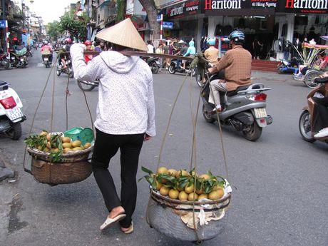 Ha Noi va nhung ganh hang rong tren pho - Anh 19