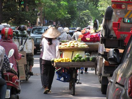 Ha Noi va nhung ganh hang rong tren pho - Anh 1