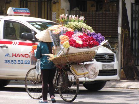 Ha Noi va nhung ganh hang rong tren pho - Anh 6