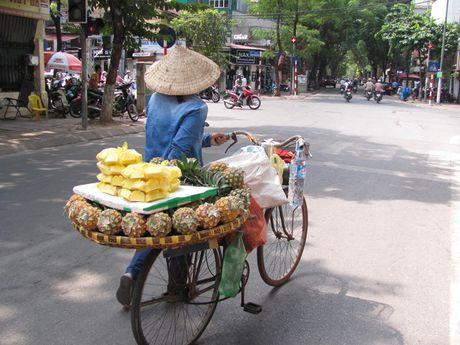 Ha Noi va nhung ganh hang rong tren pho - Anh 8