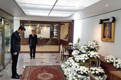 Sao Han 23/10: Sulli lai 'tha rong' nguc, Si Won vieng vua Thai Lan - Anh 3