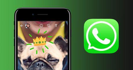 WhatsApp them tinh nang ve len anh va video cho iOS - Anh 1
