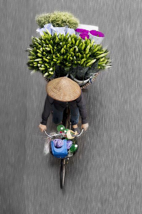 Xe hang rong Ha Noi dep me hon tu goc nhin tren cao - Anh 8
