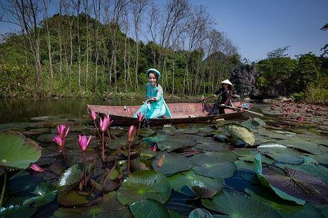 Mai Thu Huyen dep 'khong goc chet' ben hoa sung no ro - Anh 2