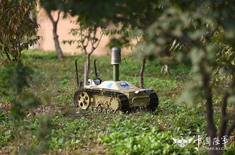 Kinh ngac dan robot chien dau-van tai cua sinh vien Trung Quoc - Anh 7