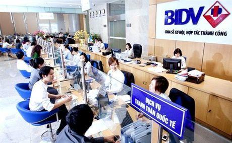 BIDV se tra hon 2.768 ty dong co tuc cho Bo Tai chinh - Anh 1