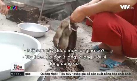 "Canh giac mam benh lay lan tu ""dac san"" thit chuot - Anh 1"