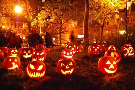 Bi mat cua Halloween - Anh 2