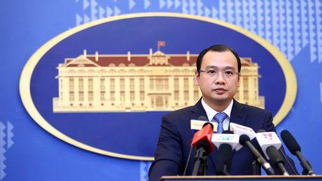 Viet Nam len tieng ve tau chien My hoat dong o lan can quan dao Hoang Sa - Anh 1