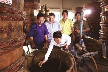 Binh Thuan – Ghe tham nghe lam nuoc mam Phan Thiet - Anh 1