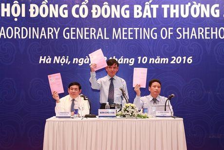 BIDV to chuc Dai hoi dong co dong bat thuong 2016 - Anh 1