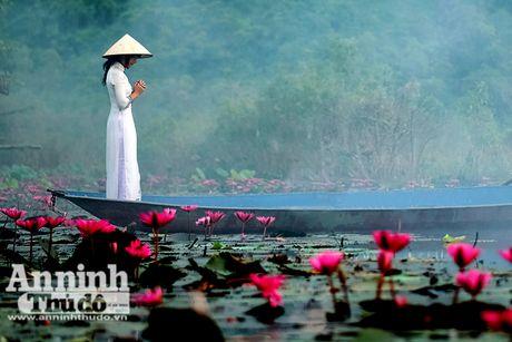 Dam chim tien canh suoi Yen mua hoa sung bung no - Anh 2
