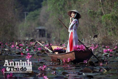 Dam chim tien canh suoi Yen mua hoa sung bung no - Anh 6