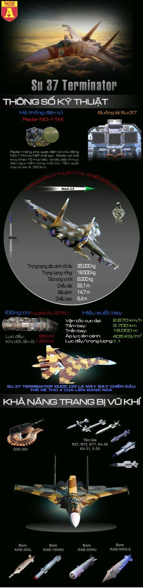Su tro lai bau troi cua 'ke huy diet' Su-37 - Anh 2