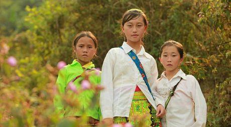 Phim tai lieu 'Duong toi truong' gianh giai dac biet tai ABU Prizes 2016 - Anh 1