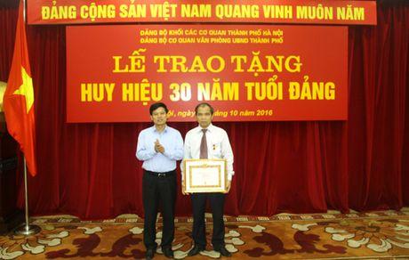 Dang bo Van phong UBND TP to chuc trao tang Huy hieu 30 nam tuoi Dang - Anh 1