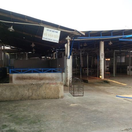 TP.HCM: Co 130 diem kinh doanh gia cam trai phep - Anh 1