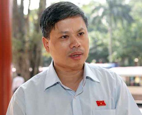 DBQH Nguyen Si Cuong: 'Xem xet nguoi do ong Vu Huy Hoang bo nhiem co yeu to tu loi' - Anh 1