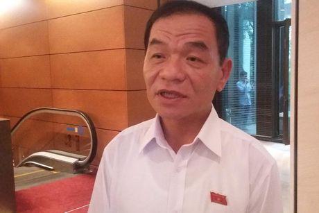 Vu ong Vu Huy Hoang va van de kiem soat quyen luc - Anh 1