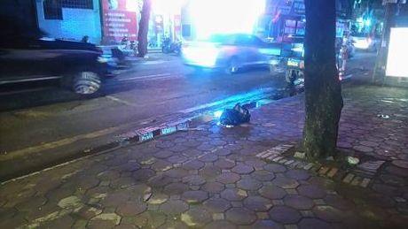 Thanh nien bat trom guc chet tren duong: Nghi bi danh nham - Anh 1