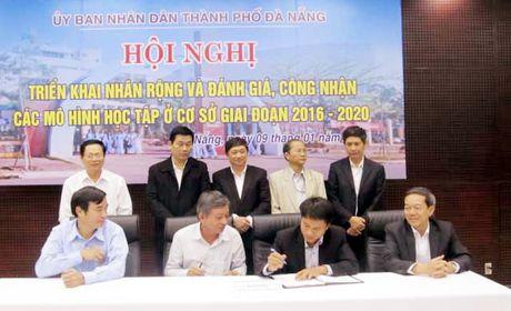 25 nam noi day cho nhung canh dieu - Anh 1