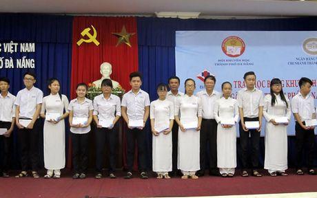 25 nam noi day cho nhung canh dieu - Anh 2