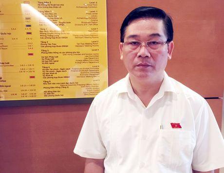 Giam ty le dieu tiet ngan sach, dam bao nguon luc cho TP Da Nang phat trien ben vung - Anh 1