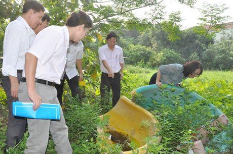 Trien khai cac bien phap phong, chong benh do Virut Zika - Anh 1