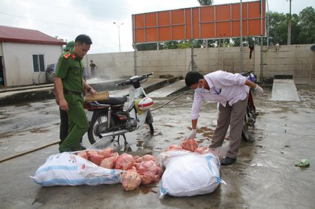 Phat hien 200kg thit ga hoi thoi tuon tu Thai Nguyen ve Ha Tinh tieu thu - Anh 2