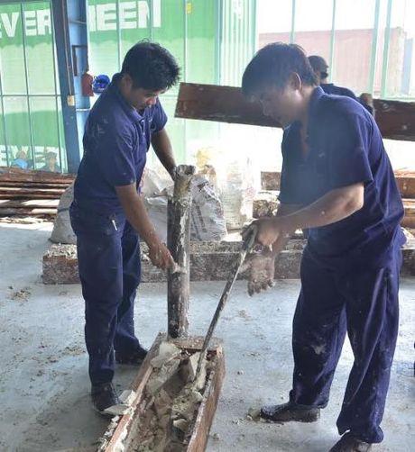 Tp. Ho Chi Minh phat hien gan 1 tan nga voi giau trong go - Anh 4