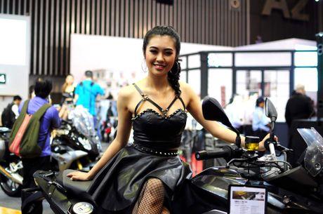 Nhung bong hong nong bong tai trien lam Motorshow 2016 - Anh 4