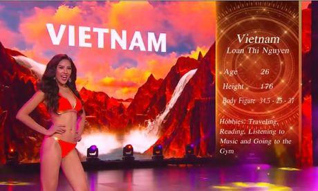 'Hoa hau Hoa binh Quoc te 2017' se to chuc tai Viet Nam - Anh 1